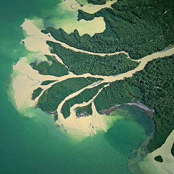 Дельта Дуная растворяет тонны плодородного ила в морских водах.  Дунай намывает новые территории